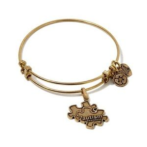 ANGELICA COLLECTION AutismAwareness charm bracelet